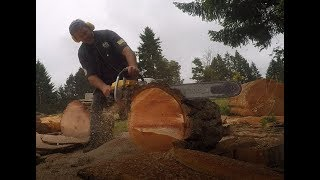 Download CHAIN SAW CUTTING CROOKED , SKIP VS FULL SEQUENCE CHAIN Video