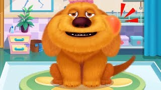 Download Fun Pet Care Kids Games - Furry Pet Hospital - Play Fun Animals Pet Care Games For Kids Video