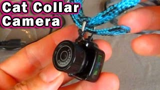 Download Cat Collar Camera $10.99 Y2000 mini cam Dog Pet Y3000 Unboxing & Review Video