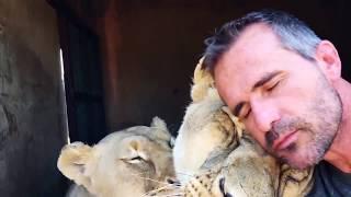 Download HAPPY BIRTHDAY MEG & AMY! | The Lion Whisperer Video