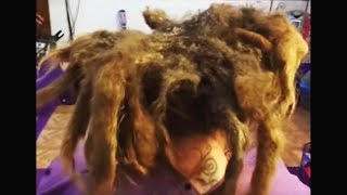 Download washing my hair for the first time since i was born... (20 years) Video