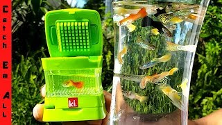 Download WORLD'S SMALLEST AQUARIUM! (Colorful Mini Live Fish Tank) Video