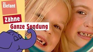 Download Die Sendung mit dem Elefanten - Zähne   WDR Video
