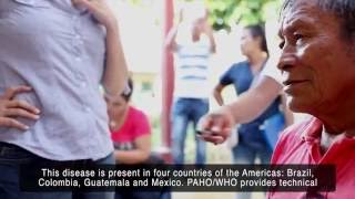 Download Trachoma Elimination in Colombia Video