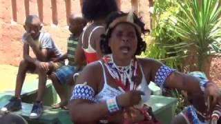 Download Traditional healers Intwaso kubongwa ingwenyama Video