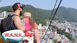 Download What to Do in Busan Video