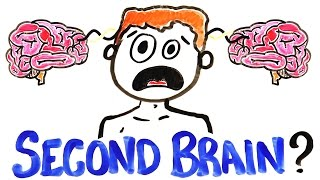 Download What If You Had A Second Brain? Video
