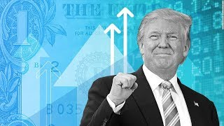 Download Trump Fires Financial Experts Tasked With Identifying Market Crash Risks Video