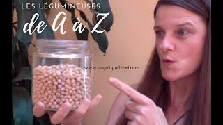 Download Comment préparer les légumineuses de A à Z - Protéines vegan Video