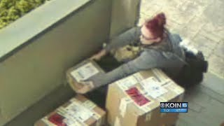 Download Neighbors on the lookout for red-headed package thief Video
