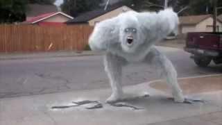 Download REAL BIGFOOT YETI SIGHTINGS SNOWMAN ICEMAN Video