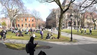 Download Brown | Scenes of Campus Video