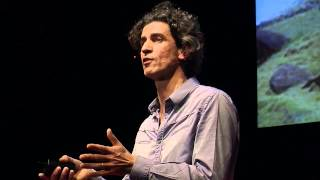 Download Notre conception du monde nous interdit le monde de demain: Yannick Roudaut at TEDxNantes Video