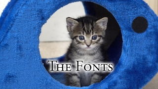 Download The Fonts, 2017-02-05 Video