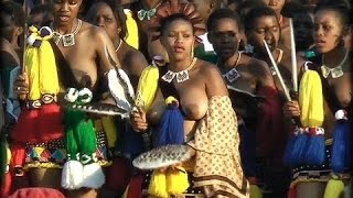 Download Reed Dance Festival Video