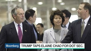 Download Trump Picks Elaine Chao for DOT Secretary Video