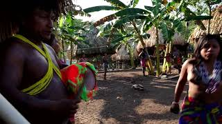 Download Comunidad Indigena Wounaan ″Laurel″, Darien Video
