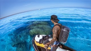 Download YBS Catch And Cook Ep 3 - CLEAREST WATER EVER + Big Tiger Shark, Hammerhead Shark and Rankin Cod Video