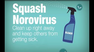 Download Clean Up After Someone with Norovirus Vomits or has Diarrhea Video