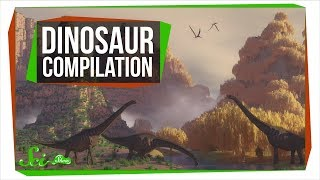 Download 5 Things You Should Know About Dinosaurs Video