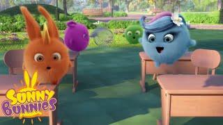 Download Cartoons for Children | SUNNY BUNNIES - Wildlife Lesson | New Episode | Season 4 | Cartoon Video
