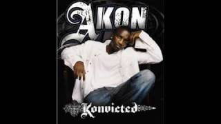 Download Akon - Party Animal [Prod. by David Guetta] [NEW 2010] Video