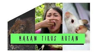 Download MAKAN TIKUS HUTAN - JEJAK PETUALANG EXTREME (Malola-Minahasa Selatan), Agustus 2017. Video