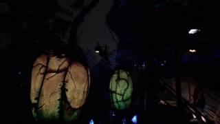 Download Pandora: The World of AVATAR in a Thunderstorm - Disney's Animal Kingdom, Walt Disney World Video