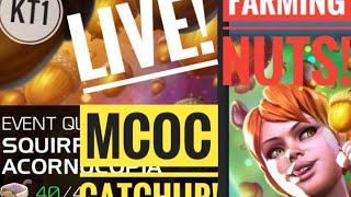 Download Finally Time To Catch Up On MCOC Farm Some Nuts And Chill! Video