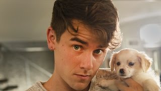 Download #Pixel: Puppies! by Connor Franta, Phone by Google Video