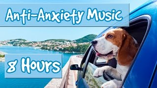 Download 8 Hours of Music for Anxious Dogs - Music to help with Separation Anxiety and Nervous Dogs 🐶 Video