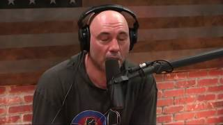 Download Joe Rogan on Addiction & Wasting Your Life Video