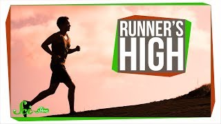 Download What Causes Runner's High? Video