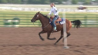 Download Horse Speed Events at the Nebraska 4-H Horse Expo Video