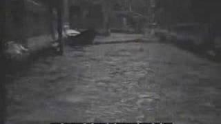 Download venezia:1929: la laguna ghiacciata Video