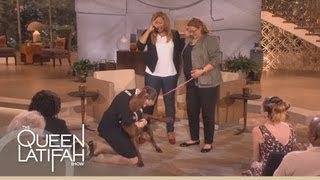 Download Dogs on Deployment Reunites Soldier's Dog on the Queen Latifah Show Video