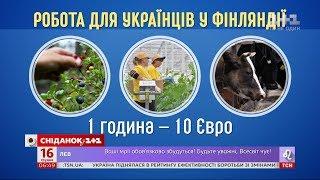Download Українці побили рекорд на ринку праці у Фінляндії Video