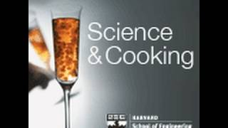 Download Historical Context and Demos Illustrating the Relationship of Food and Science | Lecture 1 (2011) Video