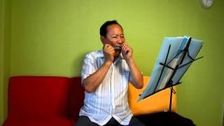 Download [비내리는호남선] 문광호 / 하모니카 독주 연주(2013.7.23) Video