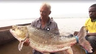Download 14 Most Difficult Fish To Catch Video