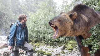 Download Woah Bear!@*$!# You won't believe how stupid this guy is!!! Video