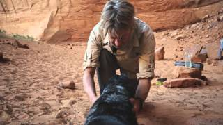 Download Ace and the Desert Dog - from Vasque Hiking Footwear Video