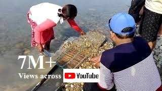 Download Live-Gold in sand of Karnali river, Nepal - नेपालकाे बालुवामा सुन पाइन्छ Video