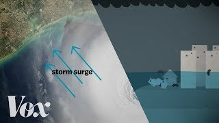 Download Why a storm surge can be the deadliest part of a hurricane Video