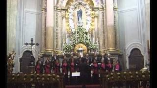 Download Grupo Coral de Ponte - O Santíssima (Manuel Faria) Video