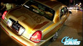 Download lowriders on hollywood blvd 6/2016 Video