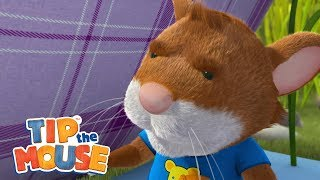 Download Billy's visit - Tip the Mouse 🐭🌳 Video