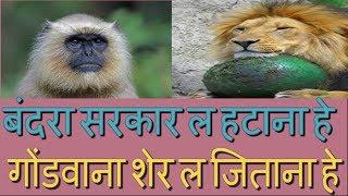 Download बंदरासरकार ल हटाना हे, गोंडवानाशेर ल जिताना हे || Bhanu Rangila&Basanti Rangili || Video