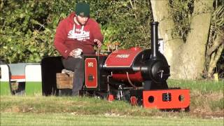Download 7 1/4 inch gauge Stafford FC7 ″Phoebe″ Video