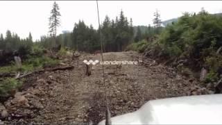 Download Cougar Close Encounter Video
